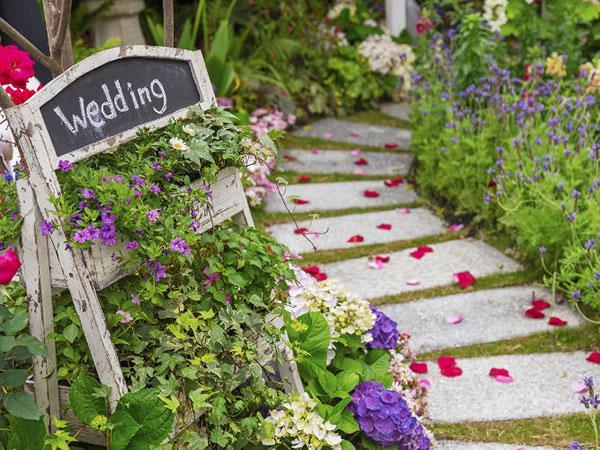 20180905_wedding